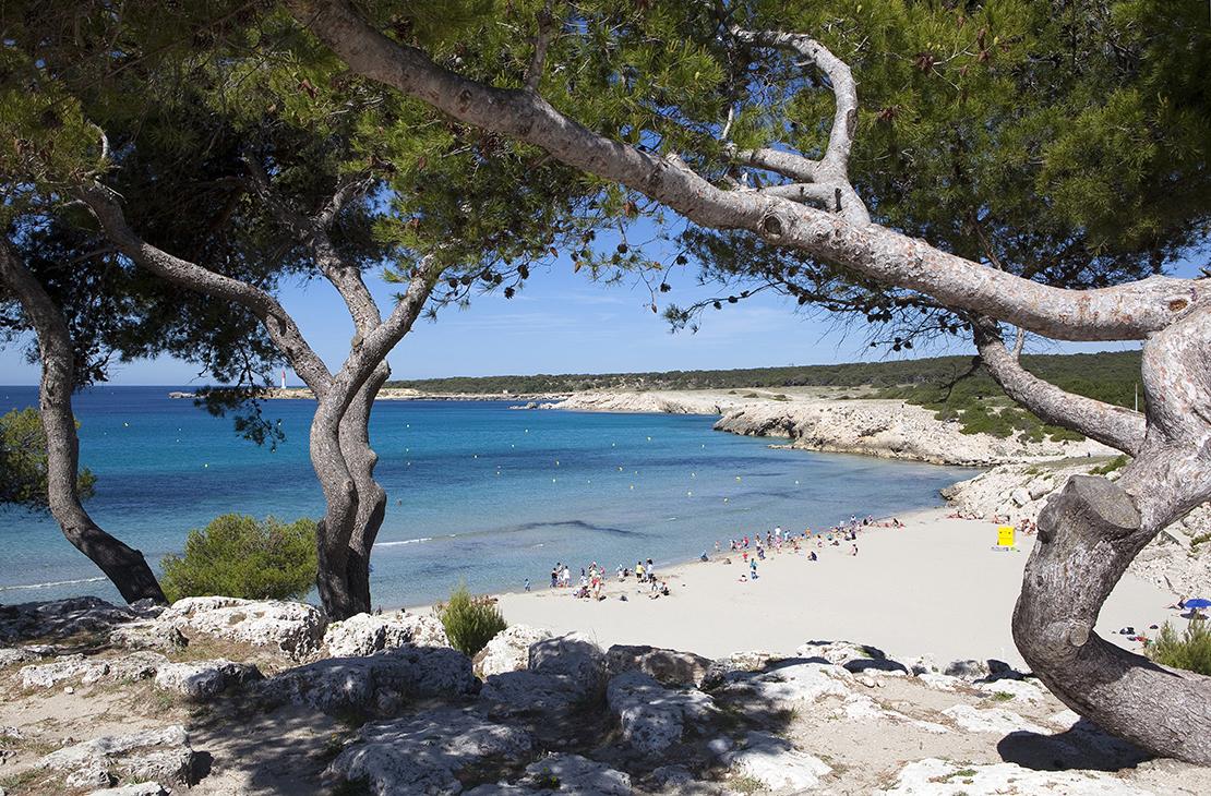 Votre camping, idéalement situé en plein cœur de la Côte Bleue