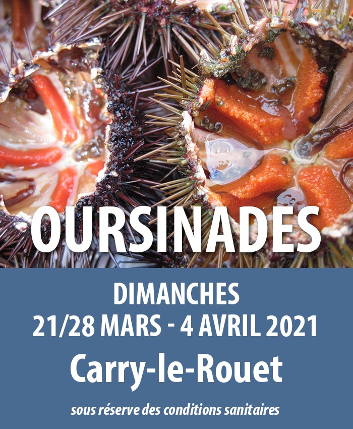 oursinades carry le rouet